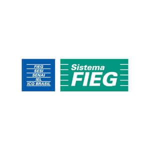 Sistema FIEG